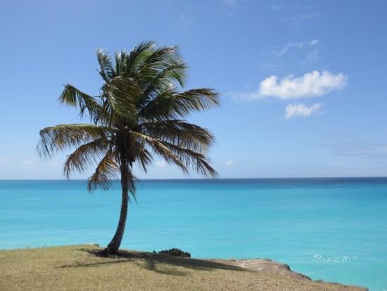 Plage de Miami (Barbade)