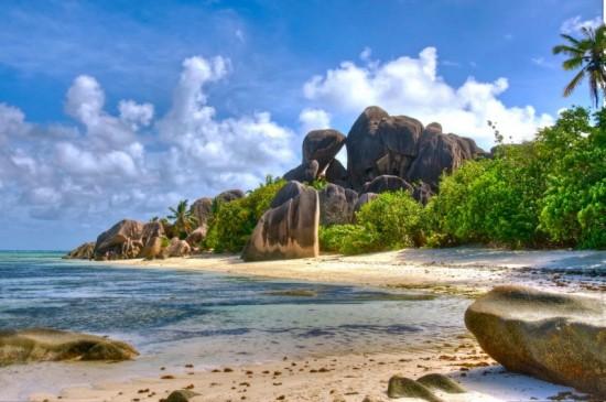 Plage protégée de Seychelles